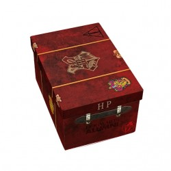 Pack de Regalo Harry Potter...