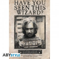 Harry Potter Poster Wanted...