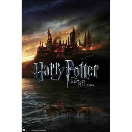 Poster Harry Potter And The...