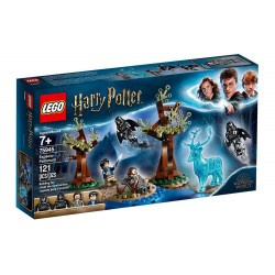 LEGO Harry Potter - Expecto...